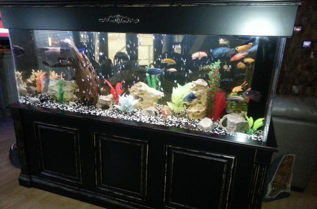 Custom finish on aquarium, black rub through finish